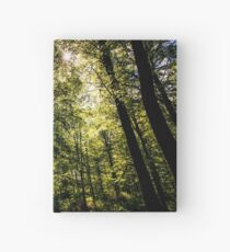 The Dark Woods Hardcover Journal