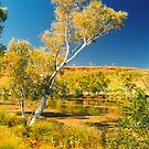 Hidden Gorge by Jayson Gaskell