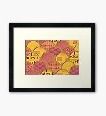 Scales Framed Print