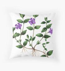 Lesser Periwinkle - Vinca minor Throw Pillow