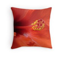 Chaba 2 Throw Pillow