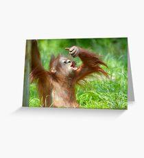 cute baby orangutan Greeting Card