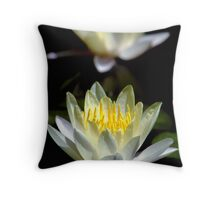 Lotus Mirror Throw Pillow