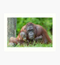 mother orangutan with her cute baby Art Print