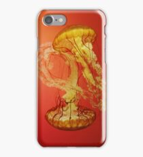 Red Jelly iPhone Case/Skin