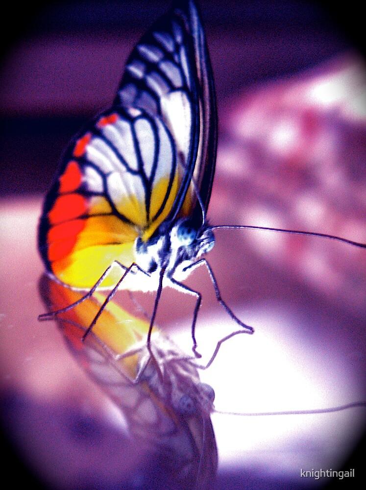 Chloe's Little Butterfly - Krystal by knightingail
