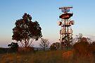 Woodlands Historic Park by Darren Stones