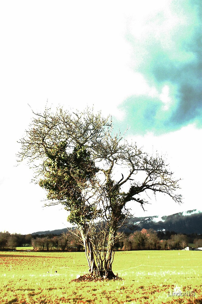 Naked Tree by Lindori19