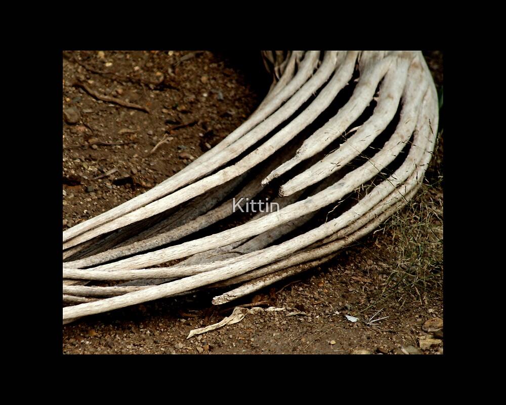 hollow 01 by Kittin