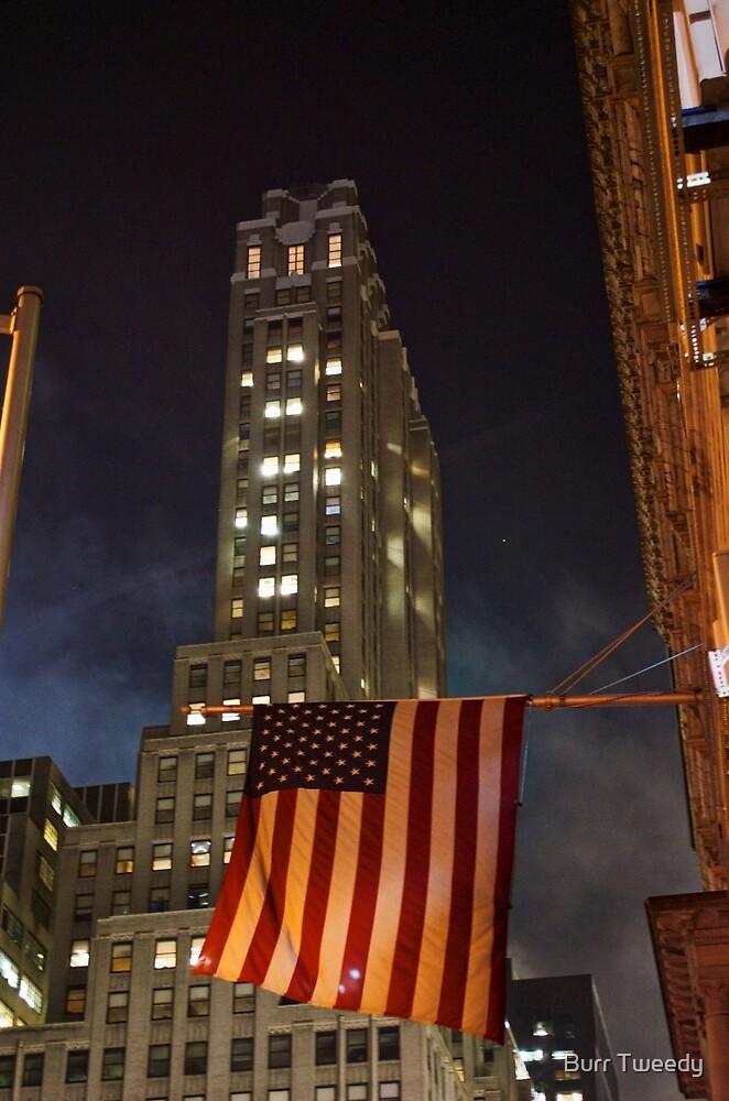 New York - 2 by Burr Tweedy