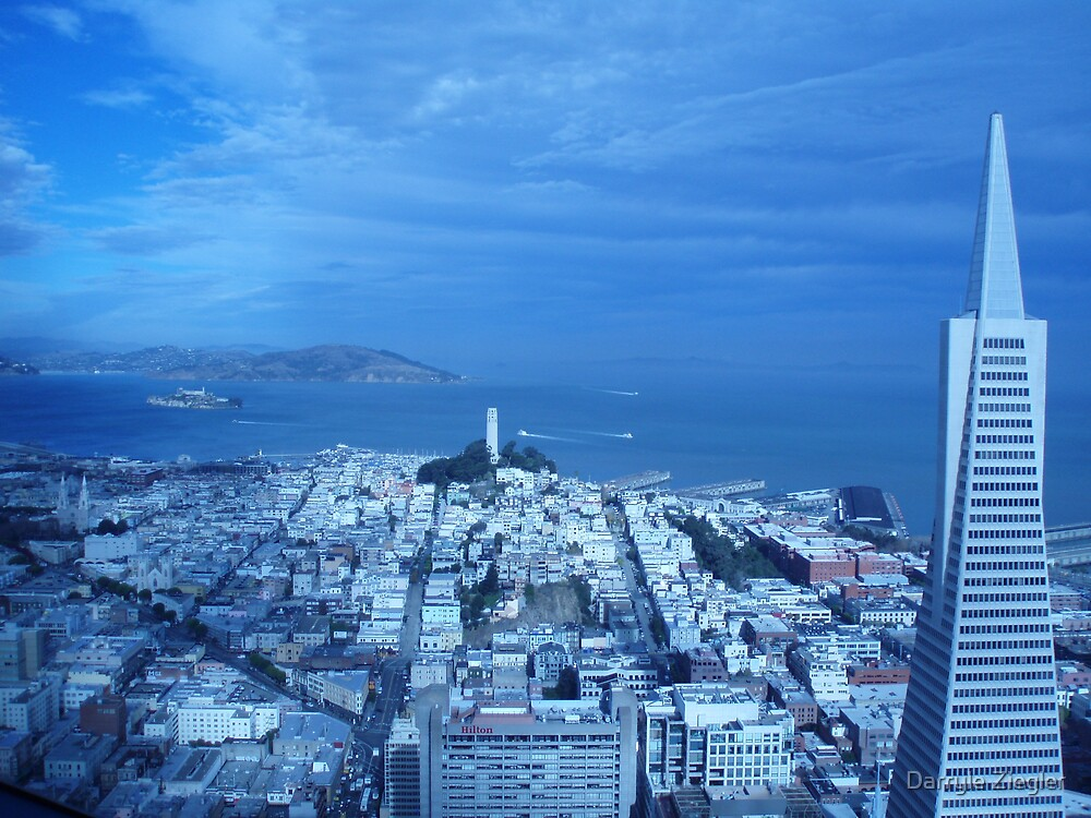San Fran by Darryle Ziegler