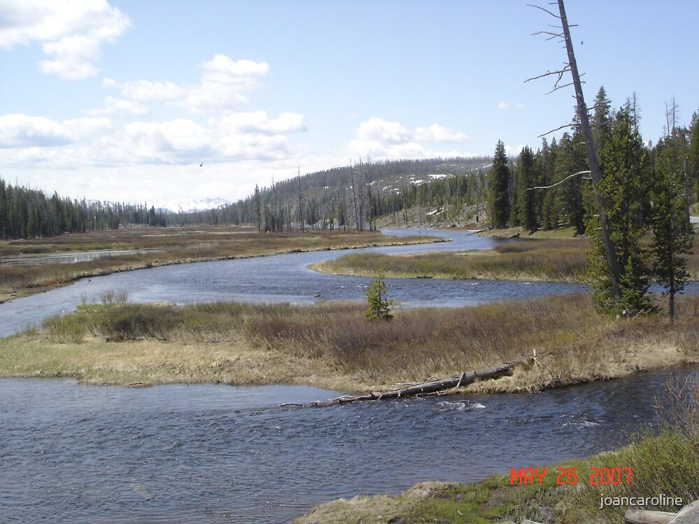 streams by joancaroline