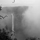 Wallaman Falls by Sara Lamond
