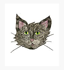 Fancy Cat Photographic Print