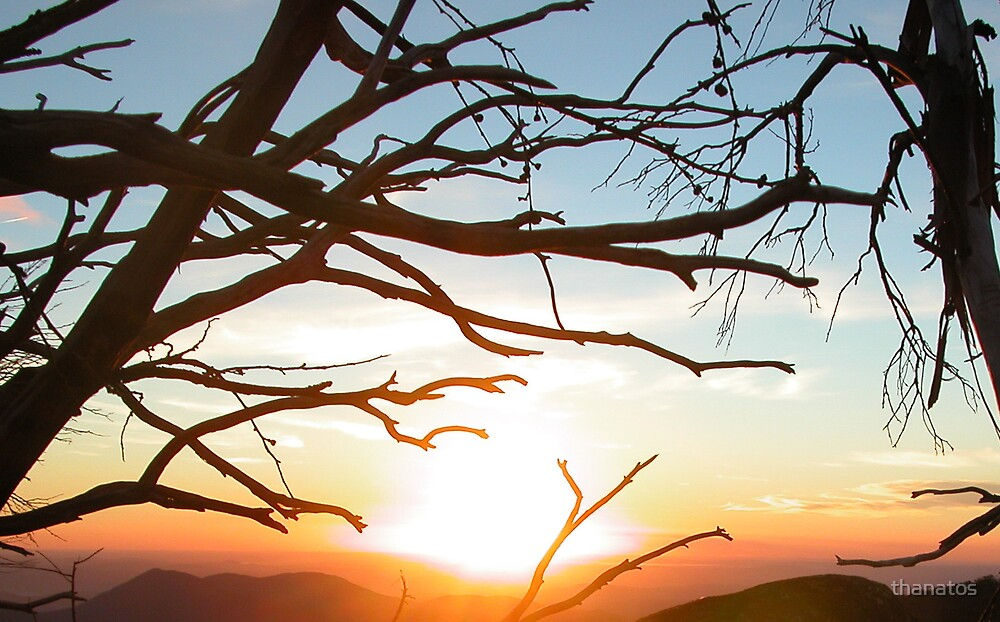 Stark Sunset by thanatos