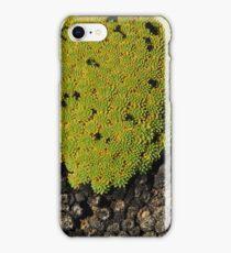5000m // Peru iPhone Case/Skin