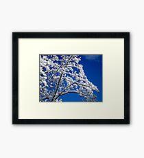 Blue Skies of Winter   ^ Framed Print
