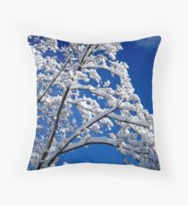 Blue Skies of Winter   ^ Throw Pillow