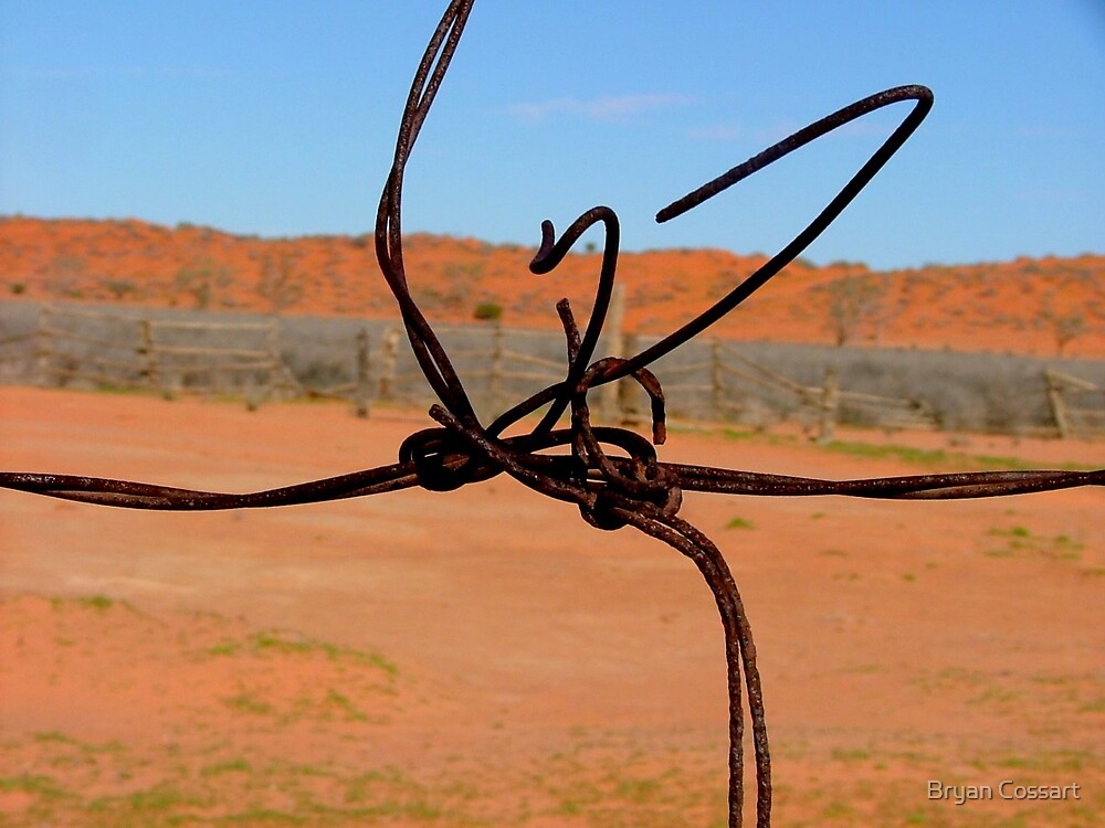 Wire knot by Bryan Cossart