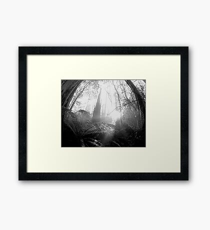 Enchanted Web Framed Print