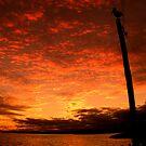 Sunset Pelican... by JAZ art