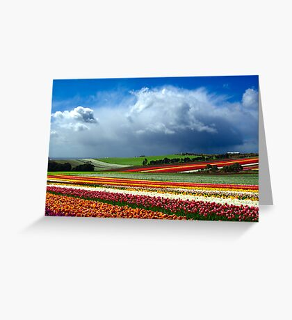 Paintbox Greeting Card