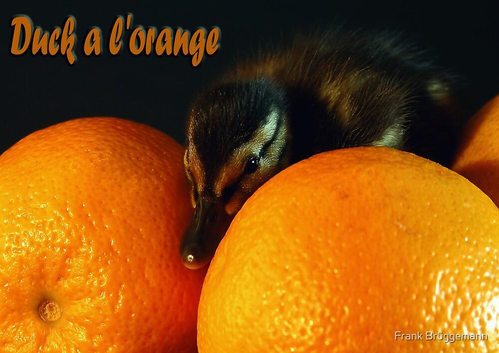 Duck a l'orange by Frank Brüggemann