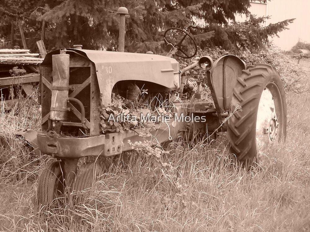 Tractor 1 by Arlita Marie Moles