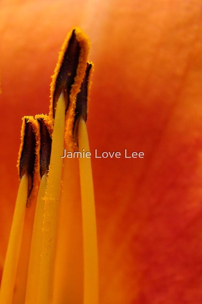 4 by Jamie Lee