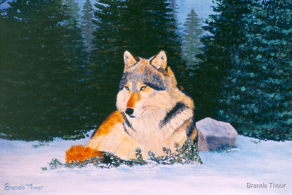 Timber Wolf by Brenda Thour