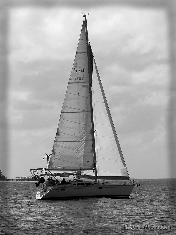 sailboat by Heather McSpadden