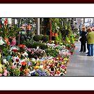 The Flower Seller Las Ramblas by John Lines