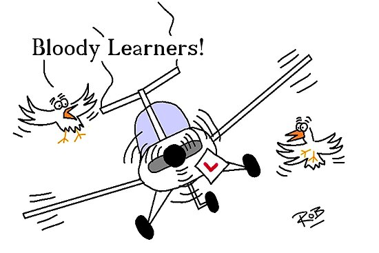 Flying Learner by Rob Johnston