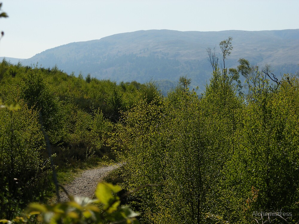 Scottish Trail by Alchemistress