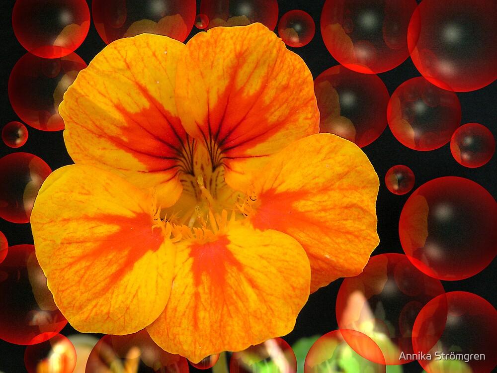 Red bubble flower by Annika Strömgren