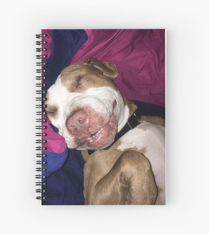 Puppy The Pitbull Cute Funny Sleeping Dog Pit Bull Animals Sticker ...
