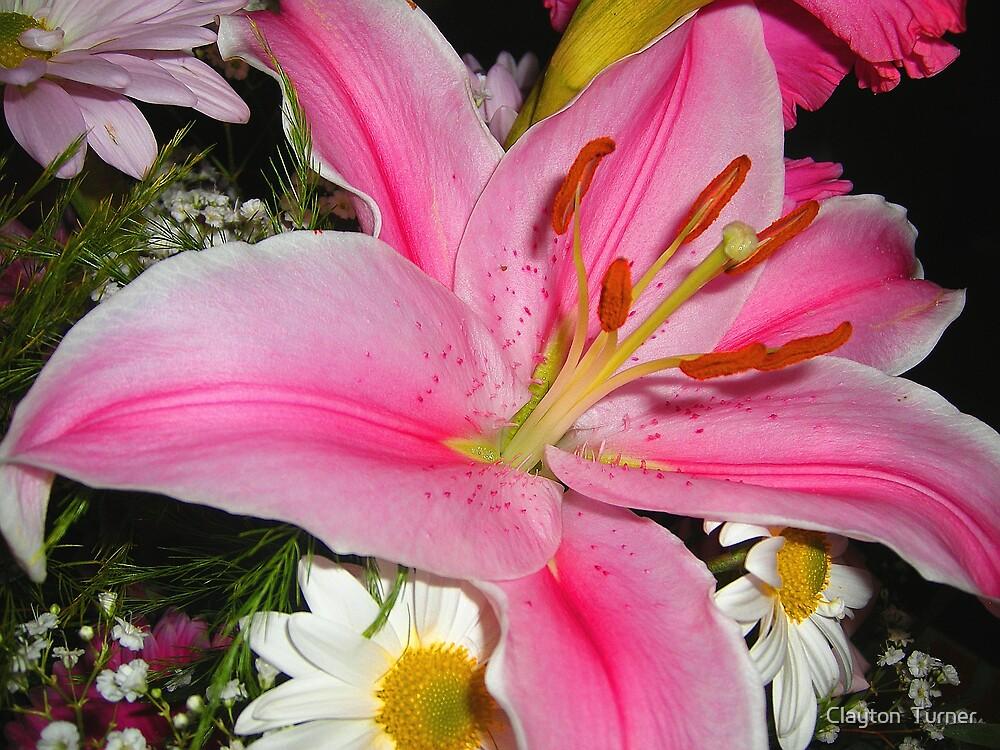 Full Bloom by Clayton  Turner