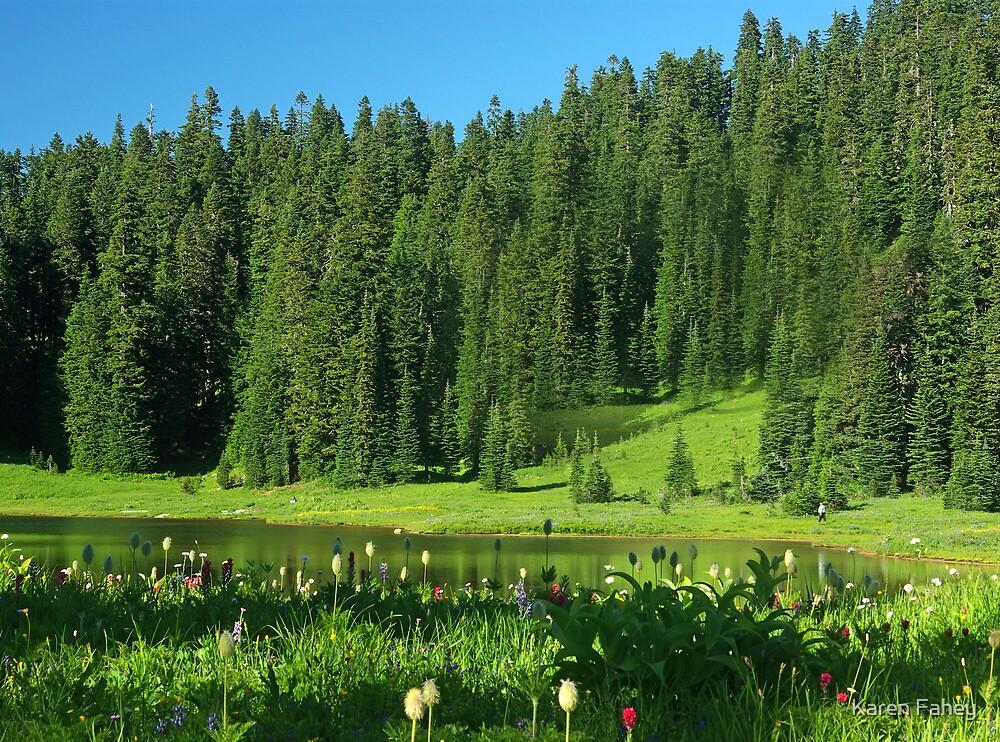 Meadow at Mount Rainier by Karen Fahey