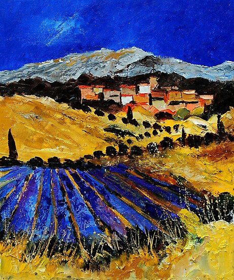 provence south of france 562 by calimero