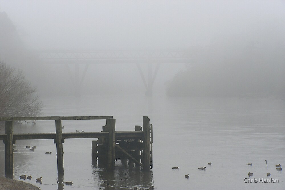 Foggy morning on the Waikato River by Chris Hanlon