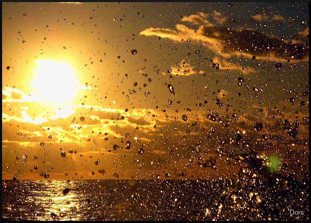 Sunset Splash by Dors