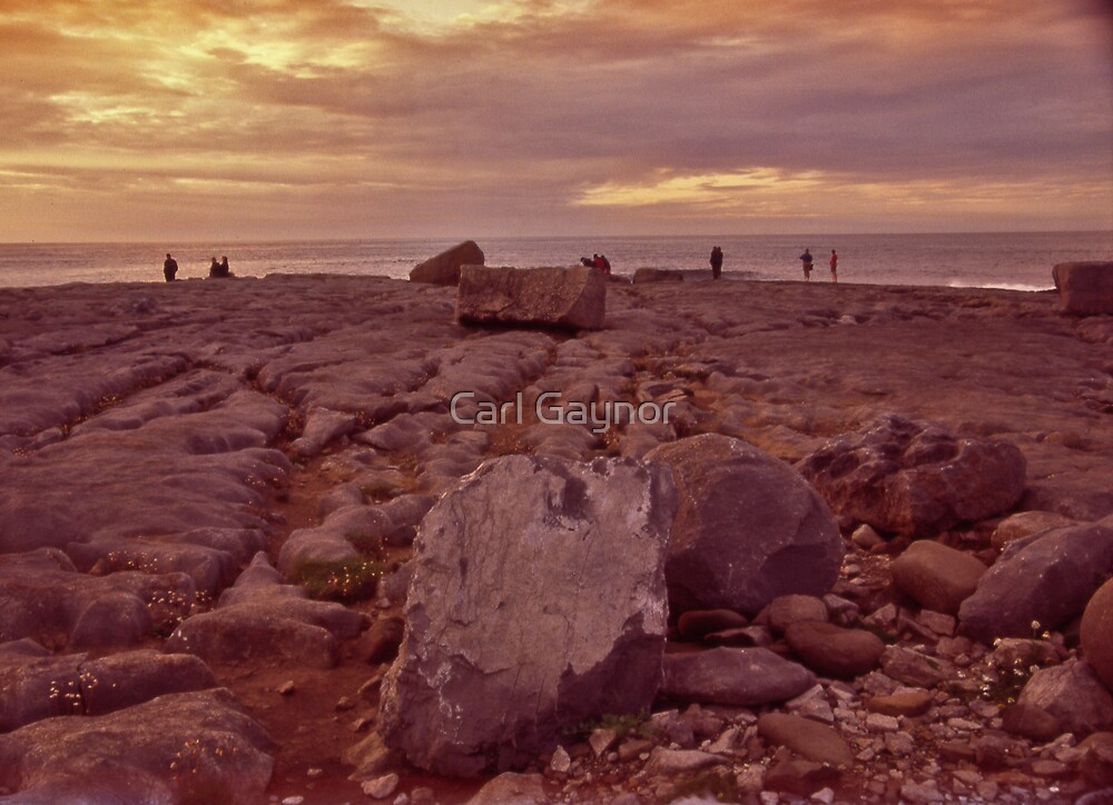 Waiting  by Carl Gaynor