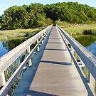 Uncle Tim's Bridge by CapeCodWave