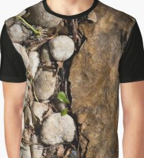 Phase Transition Graphic T-Shirt