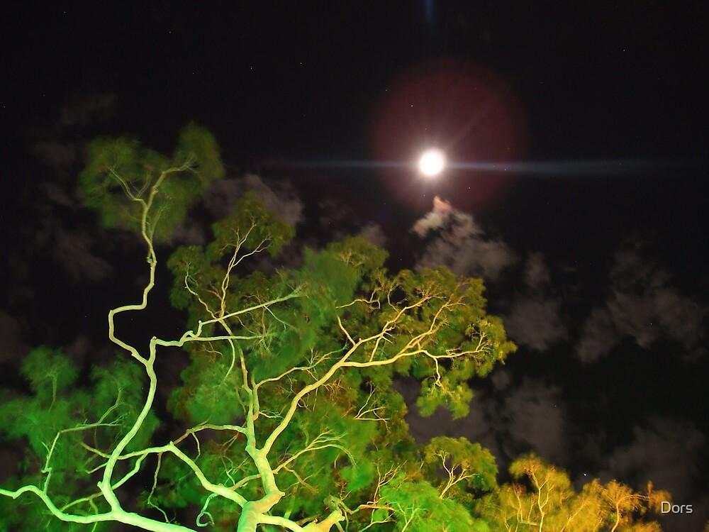 Green Tree Moon by Dors