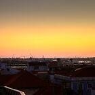 Aveiro and the harbour by João Figueiredo