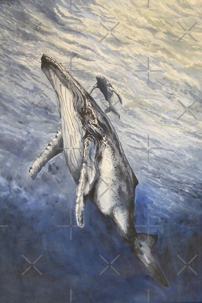 whale song by dnlddean