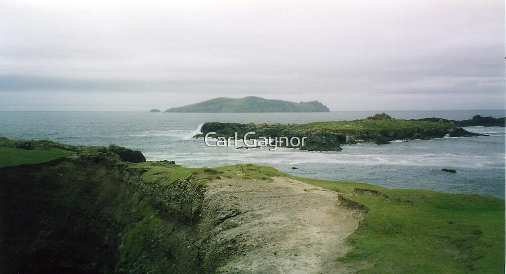 Great Blasket Island  by Carl Gaynor