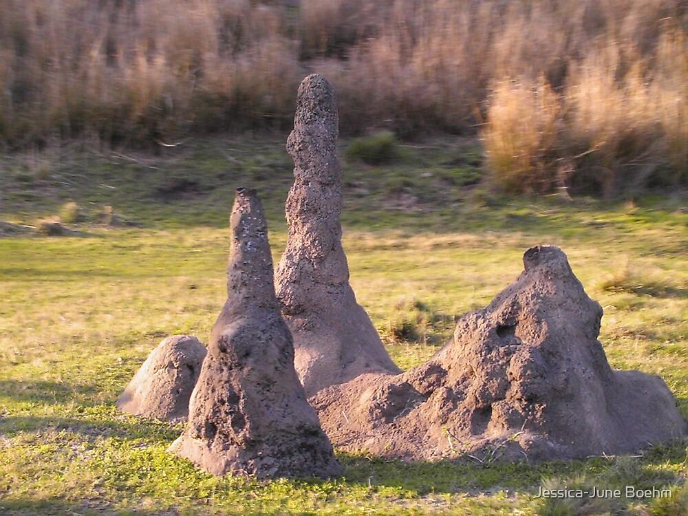 Termite Mound by Jessica-June Boehm