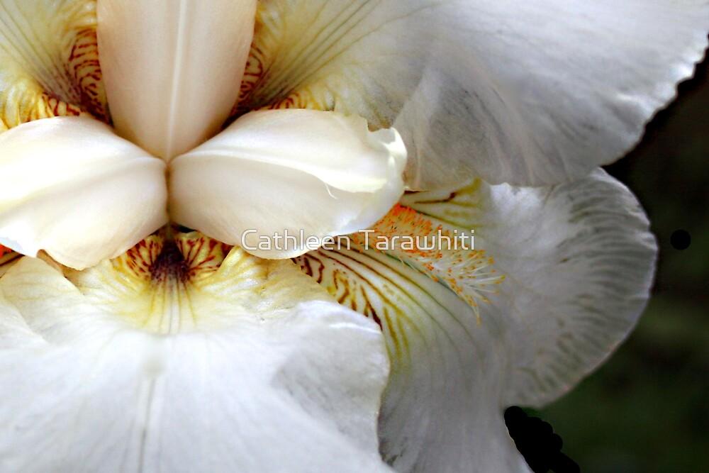 Sore flower bleeding by Cathleen Tarawhiti